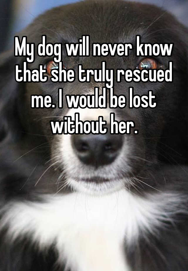 My dog will never know that she truly rescued me. I would be lost without her.
