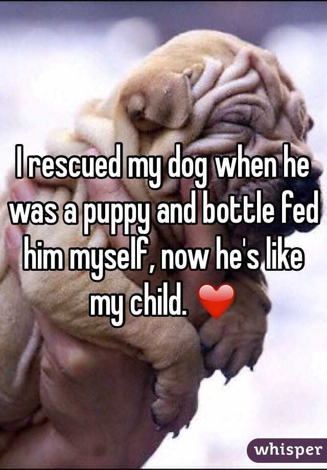 I rescued my dog when he was a puppy and bottle fed him myself, now he
