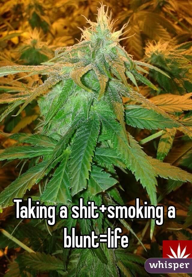 Taking a shit+smoking a blunt=life