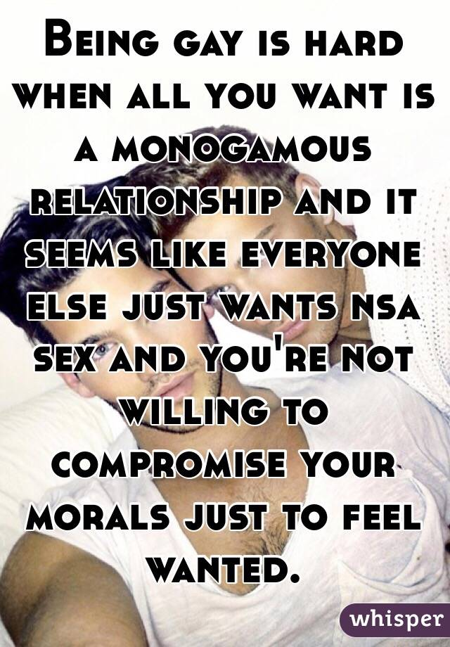 Being gay is hard when all you want is a monogamous relationship and it seems like everyone else just wants nsa sex and you're not willing to compromise your morals just to feel wanted.