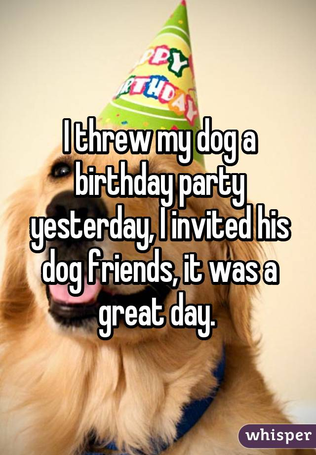 I threw my dog a birthday party yesterday, I invited his dog friends, it was a great day.