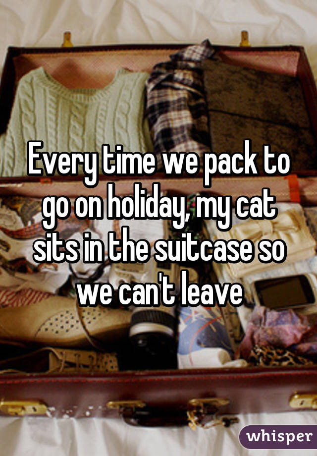 Every time we pack to go on holiday, my cat sits in the suitcase so we can't leave
