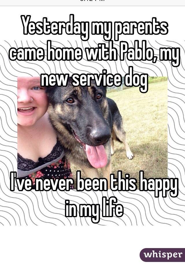 Yesterday my parents came home with Pablo, my new service dog I've never been this happy in my life