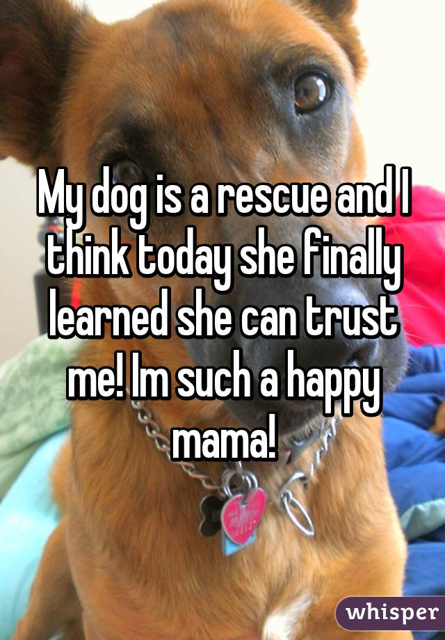 My dog is a rescue and I think today she finally learned she can trust me! Im such a happy mama!