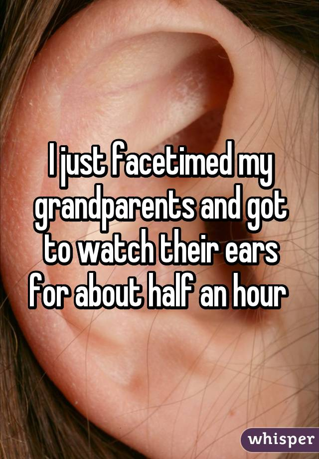 I just facetimed my grandparents and got to watch their ears for about half an hour