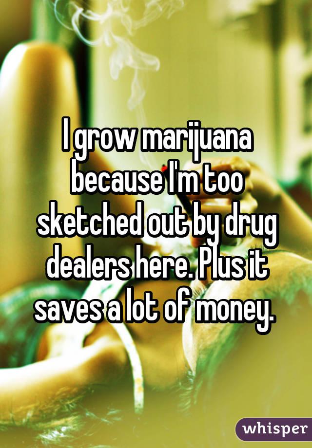 051e380a7d85b6891dae49e040f715085e8b8b wm 10 Awesome Confessions From People Who Grow Marijuana