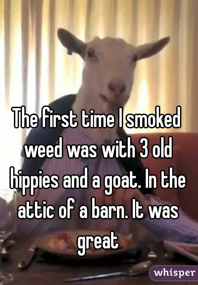 051eb010896705f374c078f6220ade86ce2fd5 wm Hilarious Stories About Getting Stoned For The First Time