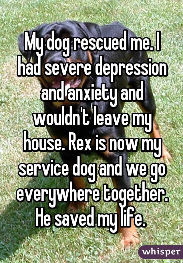 My dog rescued me. I had severe depression and anxiety and wouldn't leave my house. Rex is now my service dog and we go everywhere together. He saved my life.