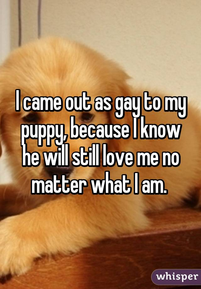 I came out as gay to my puppy, because I know he will still love me no matter what I am.