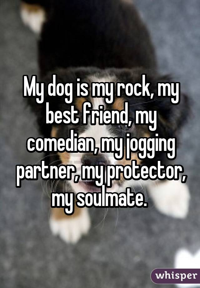 My dog is my rock, my best friend, my comedian, my jogging partner, my protector, my soulmate.