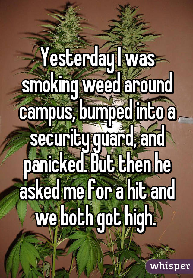 0520e7b501843c0c0199524e7dfae77279ce92 wm Higher Learning   Marijuana confessions from students