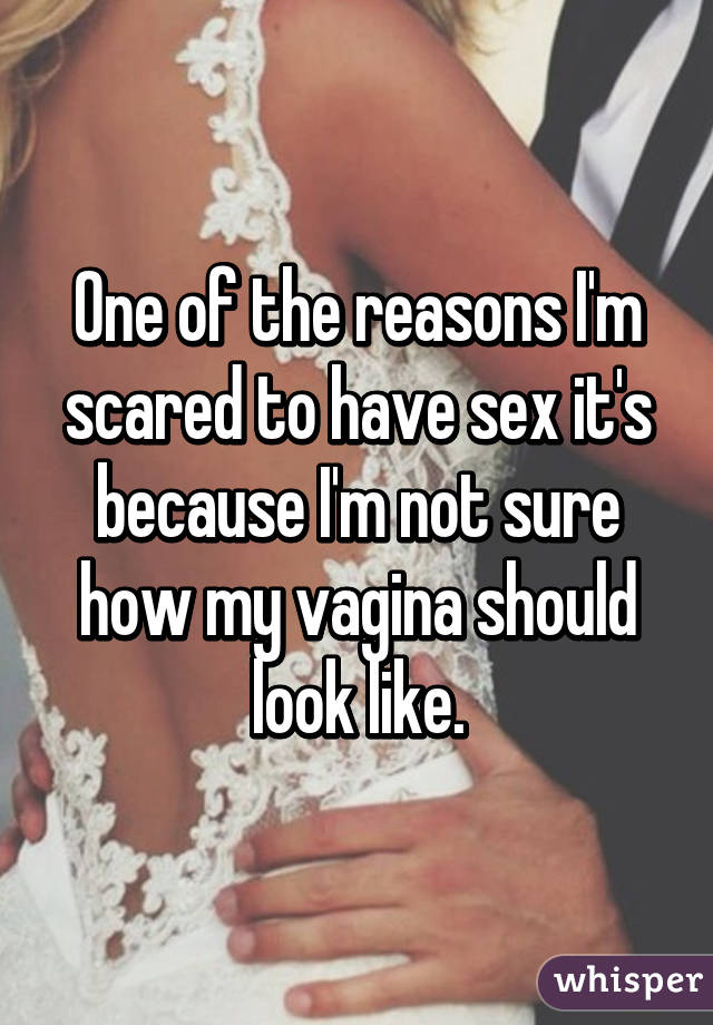 One of the reasons I'm scared to have sex it's because I'm not sure how my vagina should look like.