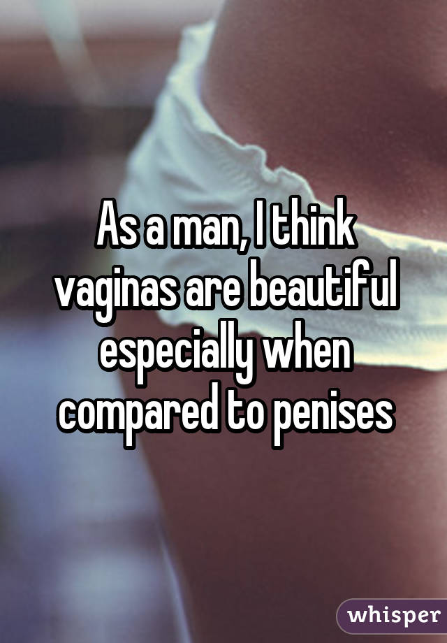 As a man, I think vaginas are beautiful especially when compared to penises