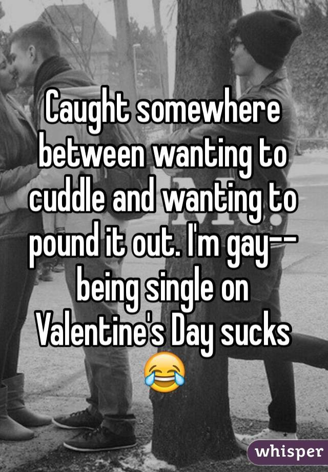 Caught somewhere between wanting to cuddle and wanting to pound it out. I'm gay--being single on Valentine's Day sucks ð???