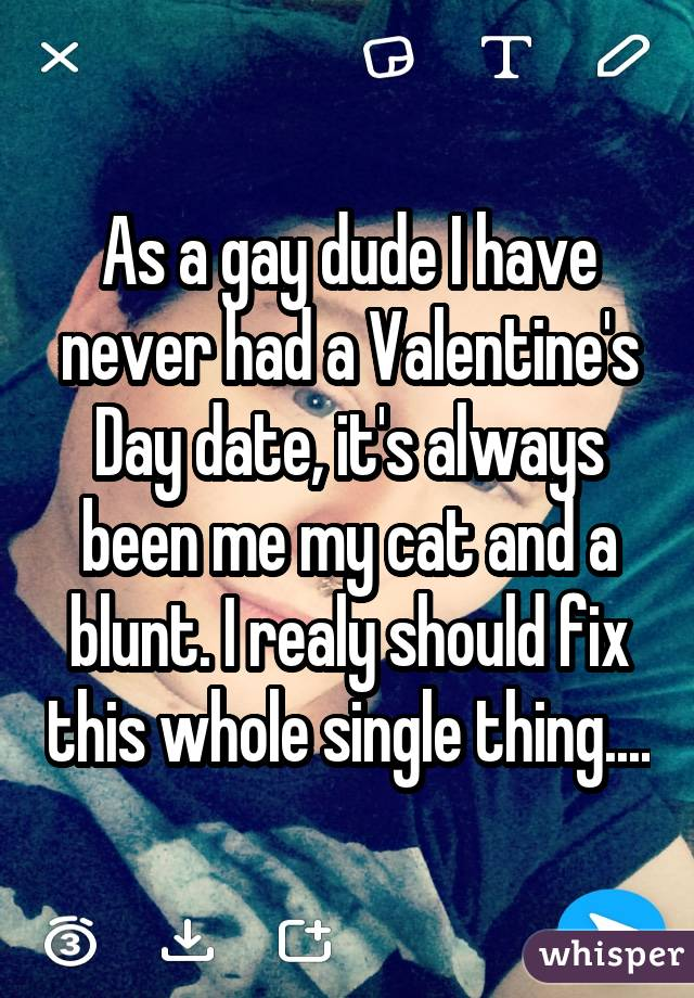 As a gay dude I have never had a Valentine's Day date, it's always been me my cat and a blunt. I realy should fix this whole single thing....